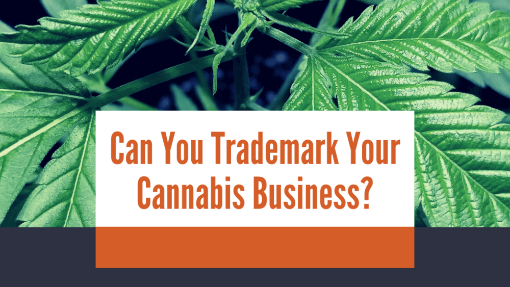 Things To Know Before Trademarking Cannabis